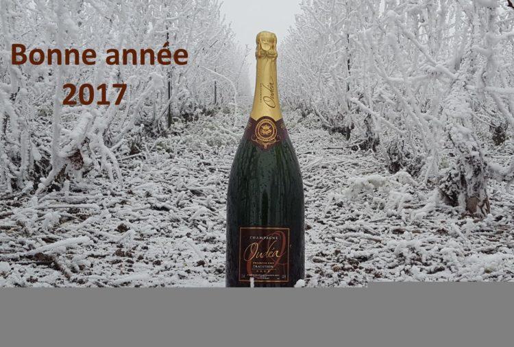 bienvenue-en-2017